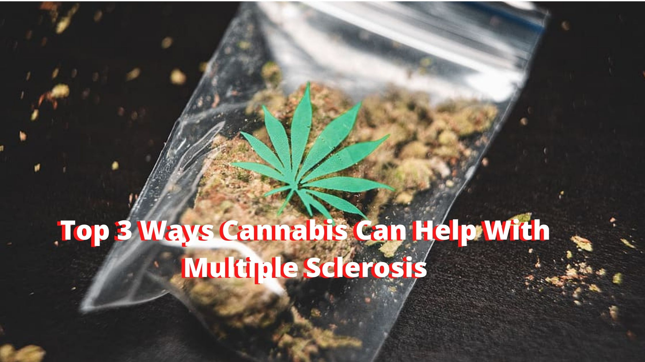 Top 3 Ways Cannabis Can Help With Multiple Sclerosis